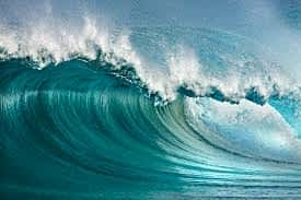 What If A Blue Wave Happens?
